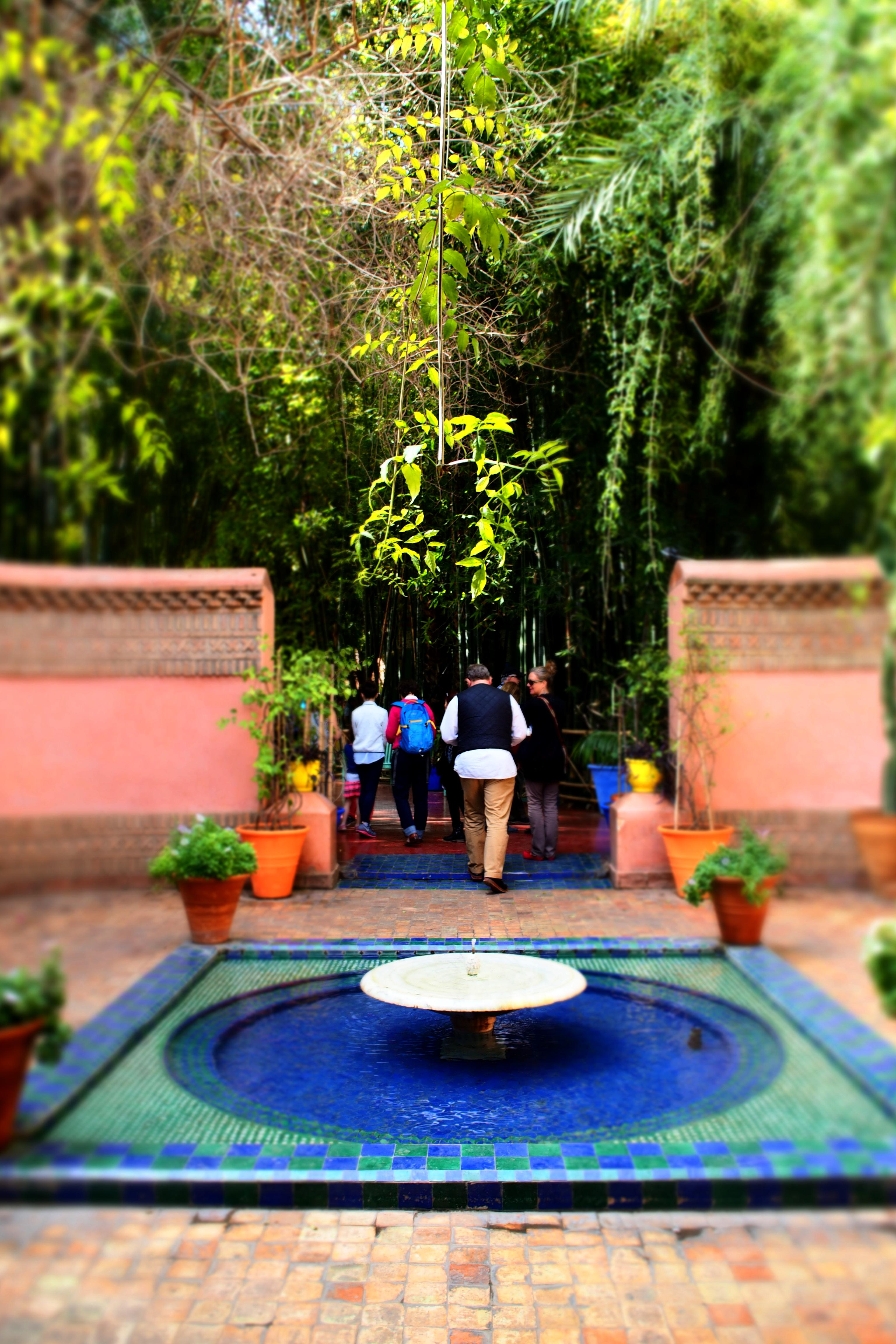 The moroccan jewel jardin majorelle the tjugito edit for Jardin majorelle 2015